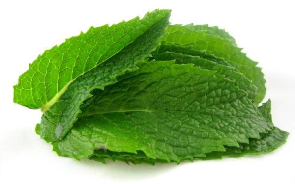 -mint-leaves
